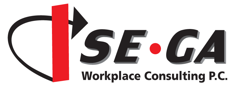 SEGA Workplace Consulting